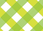 Sundborn Garden 25021 Green Gingham by Red Rooster