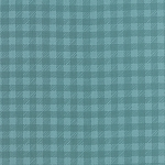 Tucker Prairie 36007-21 Foxtail Gingham by One Canoe Two for Moda