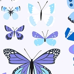 Natural History 7831-B Blue Butterfly Box by Lizzy House for Andover
