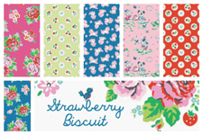 Strawberry Biscuit