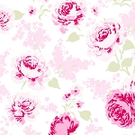 Ballet Rose 920 WP by Rachel Ashwell for Treasures by Shabby Chic