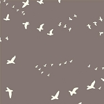 Flight Organic Canvas BDG-03 River Rock by Jay-Cyn Designs for Birch