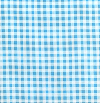 Darla TW18-Blue Gingham by Tanya Whelan for Free Spirit EOB