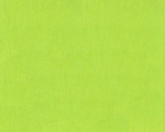 Everyday Organic Solids Y0890-18 Lime by Clothworks EOB