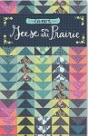 Geese on the Prairie Quilt Pattern by 1 Canoe 2