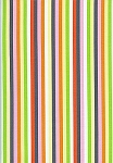 Now We're Goin Places C8363 Multi Stripe by Timeless Treasures