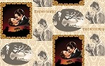Gone With The Wind An American Classic 20879 -A for Quilting Treasures  EOB