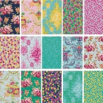 Lucky Girl 15 Fat Quarter Set Jennifer Paganelli for Free Spirit