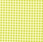 Oops A Daisy 32487-14 Lime gingham by Keiki for Moda EOB