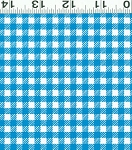 Picnic Pals Organic Y1000-30 Blue Gingham by Clothworks