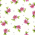 Delightful SG6147 Raspberry Playful Posies by Michael Miller