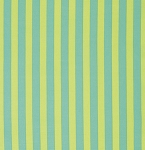 Elizabeth PWTP069 Citrus Tent Stripe by Tula Pink for Free Spirit