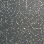 Sparkly Spider Web 7781-A Smoke by Alexander Henry