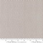 Sundrops 29016-24 Taupe Dotted by Corey Yoder for Moda