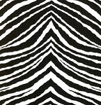 Flower Power JP29 Black Zebra by Jennifer Paganelli EOB