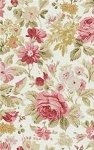 Vintage Rose 103 E Cream Floral by Rachel Ashwell