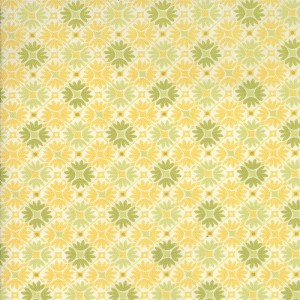 Sunnyside 27168-13 Glow Prism by Kate Spain for Moda