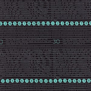 Elementary 5560-12 Black Calendar by Sweetwater for Moda