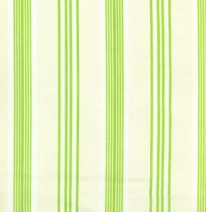 Darla TW17-Green Ticking by Free Spirit EOB .56 yd