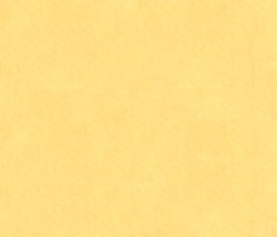 Everyday Organic Solids Y0890-8 Light Yellow by Clothworks