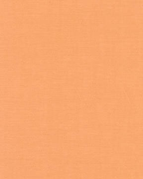 Amy Butler Quilting Solids AB45 Orange for Westminster Fabrics