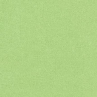Ultra Sateen U004-1706 Celery by Robert Kaufman EOB - FQ