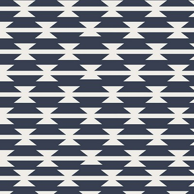 Arizona ARZ-551 Tomahawk Stripe by April Rhodes for Art Gallery