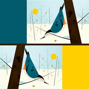 Charley Harper Organic CH-10 White Breasted Nuthatch by Birch