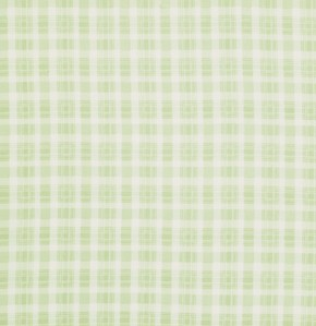 Rosey PWTW067 Green Plaid by Tanya Whelan for Free Spirit