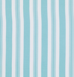 Sunshine Rose PWTW074 Blue Stripe by Tanya Whelan