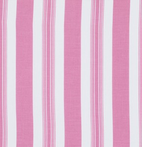 Sunshine Rose  PWTW074 Pink Stripe by Tanya Whelan