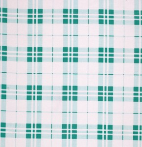 Veranda PWVM077 Shade Summer Plaid by Verna Mosquera for Free Spirit