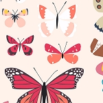 Natural History 7831-N Red Butterfly Box by Lizzy House for Andover
