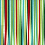 That's All Stripe CX4956 Multi by Michael Miller
