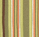 Gypsy Caravan PWAB085 Pesto Hammock Stripe by Amy Butler