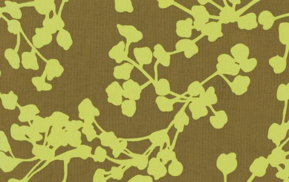 Belle olive coriander amy butler westminster - Olive garden fayetteville arkansas ...