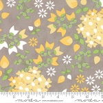 Sundrops 29010-14 Taupe Bouquet by Corey Yoder for Moda