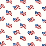 Storybook Americana 42343-2 White Flags by Windham
