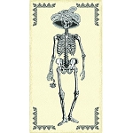Mrs. Chillingsworth 8165-N Cream Skeleton Panel by Andover