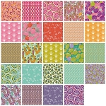 Piecemeal 24 Fat Quarter Set by Tina Givens for Free Spirit