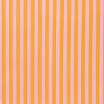 Tabby Road PWTP069 Marmalade Tent Stripe by Tula Pink