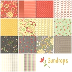 Sundrops 14 Fat Quarter Set by Corey Yoder for Moda
