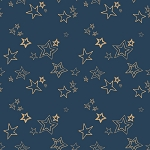 Wild & Free WFR-146 Midnight Roof by Maureen Cracknell for Art Gallery