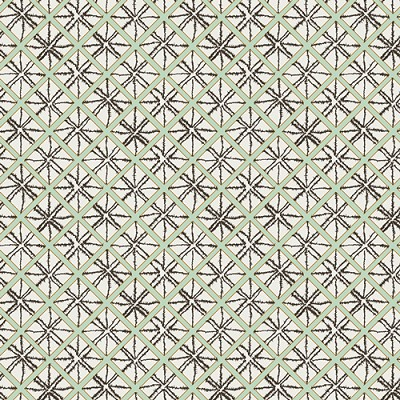Wanderer 23308 Nopal Diamond Cloth by April Rhodes for Art Gallery