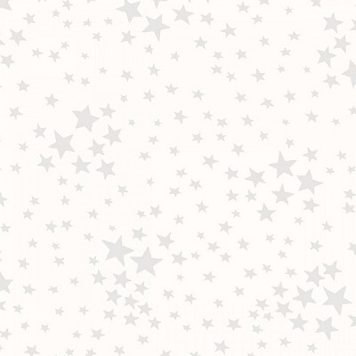 Storybook Americana 42348-6 White on White Stars by Windham