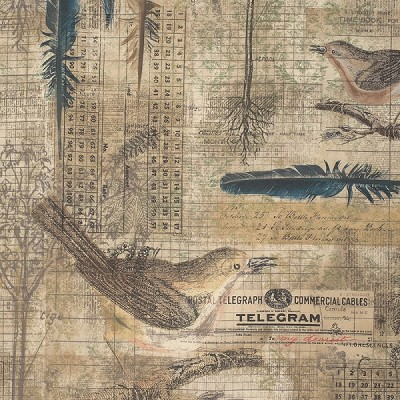 Wallflower PWTH034.8 Multi Aviary by Tim Holtz for Coats
